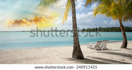 Caribbean Beach and Palm tree. Paradise. Vacation and Tourism concept. - stock photo