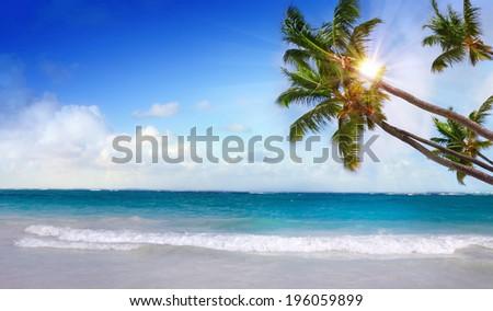 Caribbean beach and sun shining.  - stock photo
