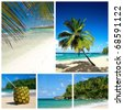 Caribbean beach collage. Beach with palm and and exotic cocktail - stock photo