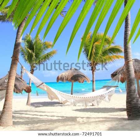 Caribbean beach hammock and palm trees in Mayan Riviera Mexico [Photo Illustration] - stock photo