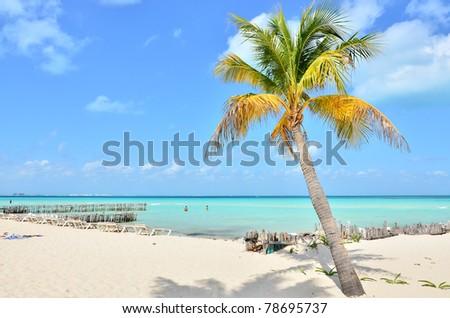 Caribbean beach (Isla Mujeres, Mexico) - stock photo