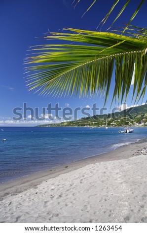 Caribbean Beach with grey lava sand - stock photo