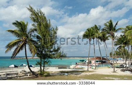 Caribbean beach with palms and catering