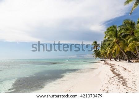 Caribbean beach with palms, paradise, Saona, Dominican Republic - stock photo