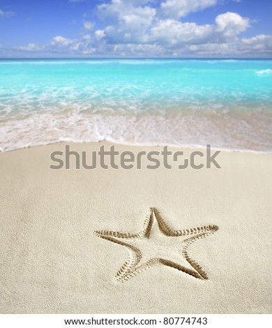 caribbean beach with starfish print on white sand such as a summer vacation symbol [Photo Illustration] - stock photo