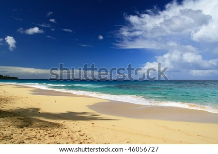 Caribbean coastline with palm shadow