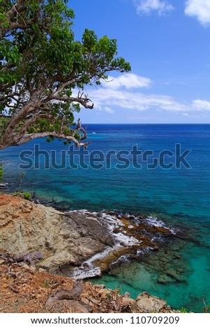 Caribbean Costline - Antigua - stock photo