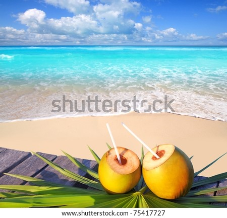 Caribbean paradise beach coconuts cocktail palm trees [Photo Illustration] - stock photo