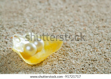 Caribbean pearl in shell over white sand in a summer tropical beach - stock photo