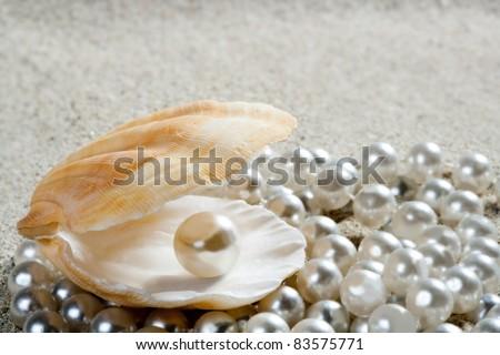 Caribbean pearl inside clam shell over white sand beach - stock photo