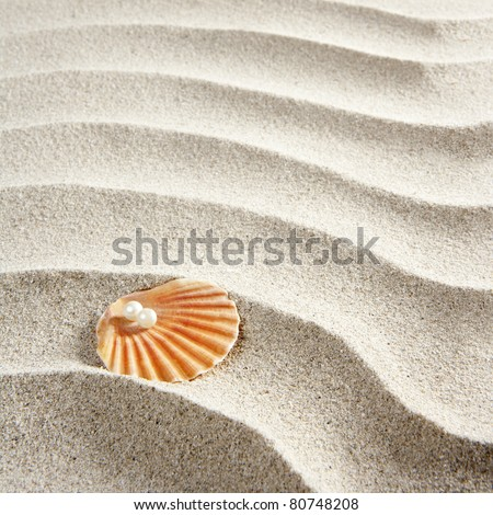 Caribbean pearl on shell in white wavy sand beach - stock photo