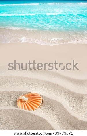 Caribbean pearl on shell in white wavy sand beach of a tropical turquoise sea [ photo-illustration ] - stock photo