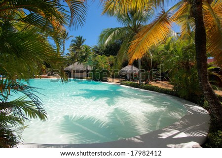 Caribbean pool framed by Palm Trees - stock photo