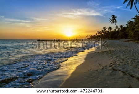 Caribbean sea beach sunset with palm trees.