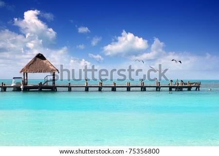 Caribbean tropical beach cabin pier Contoy island Mexico - stock photo