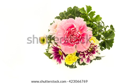 Carnation and chrysanthemum flower in vase on white background.