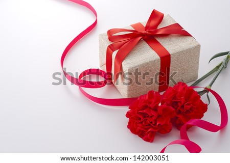 carnation and gift box on white background - stock photo