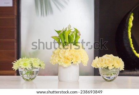 Carnation pots on the table - stock photo