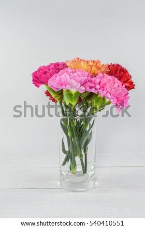 Carnation, various color