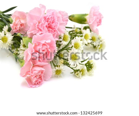 Carnations on white