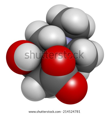 Carnitine molecule, chemical structure. Often found in nutritional supplements. Natural food sources include red meat and dairy products. Atoms are represented as spheres with conventional color.