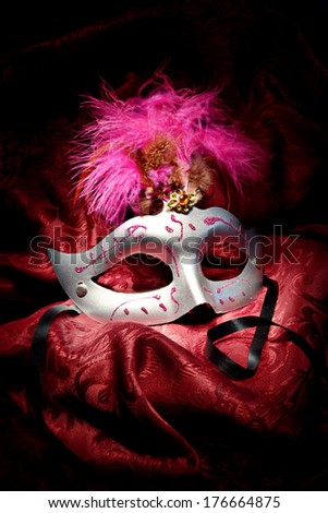carnival mask - stock photo
