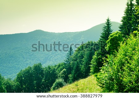 Carpathian hillsides - stock photo