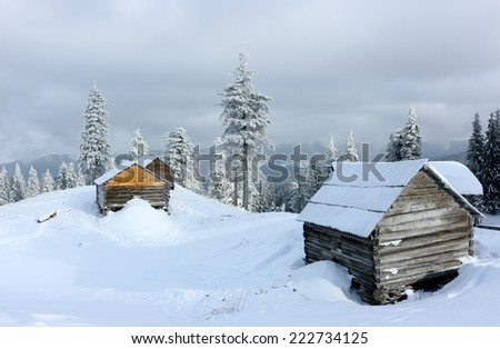 Carpathian mountain landscape in winter. Mountain camp in the Carpathian mountains in the background beautiful fir trees in the winter season. Ukraine. - stock photo