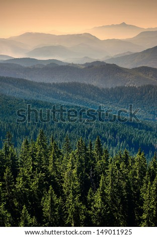 Carpathian mountain valley with many hills in a fog - stock photo