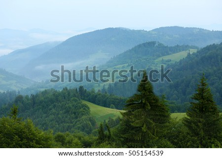 Carpathian mountains in summer