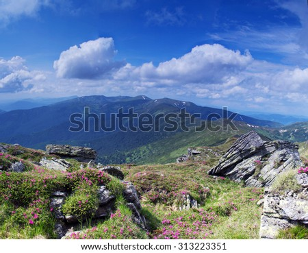 Carpathian Mountains. Panorama of the mountains - stock photo