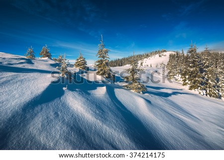 Carpathian mountains valley covered with fresh white snow. Sunny winter morning. Majestic landscape. Ukraine, Europe - stock photo