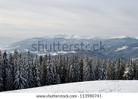 Carpathians in winter