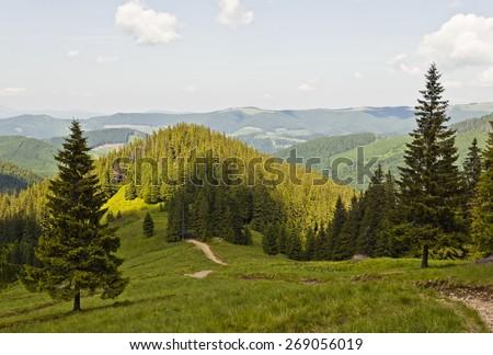 Carpathians mountains, Ukraine - stock photo