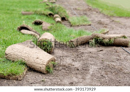 Carpets of turf or grass with erosion control mesh during lawn reseeding - stock photo