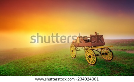 carriage on green grass at sunrise - stock photo