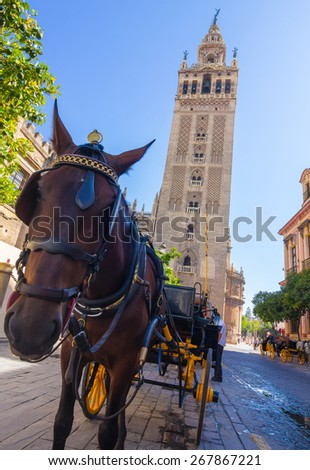 Carriage with horse next to the famous Giralda in Seville, Spain - stock photo