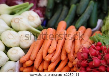 carrot, celery and radish at the farmer's market - stock photo