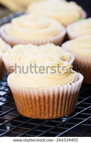carrot cupcakes - stock photo