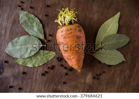 Carrot with a sprout on wooden background - stock photo