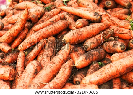 carrots dirty background - stock photo