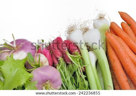 carrots, onions, radishes, turnips isolated on  white background - stock photo