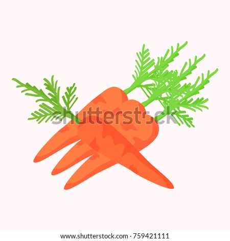 Carrots with green leaves isolated on white background. Tasty organic orange vegetable  illustration. Fresh plants harvest in gaming concept. Vegan food in flat design cartoon style