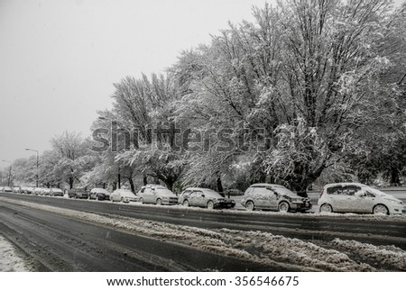 Cars and trees covered in snow in Christchurch, New Zealand - stock photo