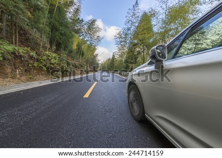 Cars with the road in the woods