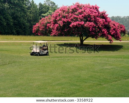 Cart in front of crepe myrtle - stock photo