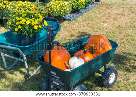 Cart with colorful pumpkins at autumn farmers market. - stock photo