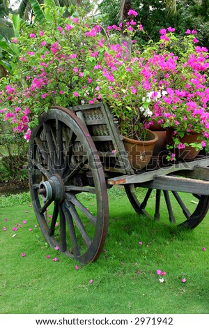cart with full of flowers