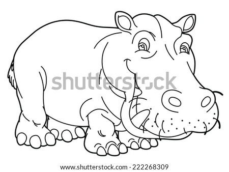 Cartoon animal - hippo - caricature - coloring page - illustration for the children