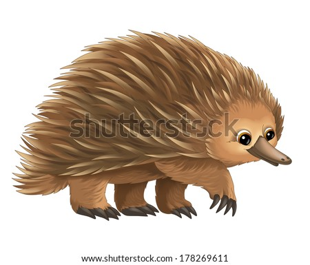 Cartoon animal - porcupine - illustration for the children - stock photo